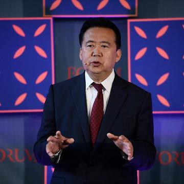 国际刑警组织前主席孟宏伟(图片来源:Diarmuid Greene/wikipedia,CC BY 2.0)